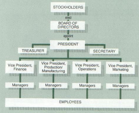 Typical Corporate Organizational Chart Organizational Chart Business Org Chart Business Organizational Structure