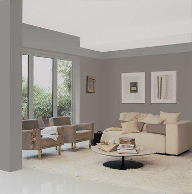 Peinture Salon Gris Taupe Feutré Pour Une Ambiance élégante