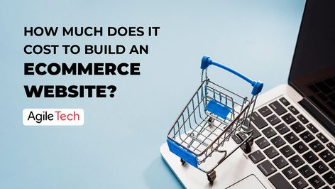 Ecommerce Website Cost: How To Build A Profitable Online Store?