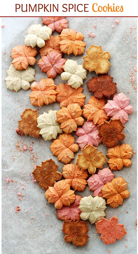 Buttery and delicious spritz cookies flavored with everyone's Fall-favorite, pumpkin spice! They really are SO! GOOD! #OxoGoodCookies
