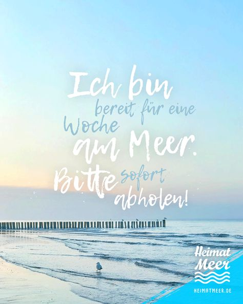 #woche #eine #meer #amEine Woche am Meer!Eine Woche am Meer!