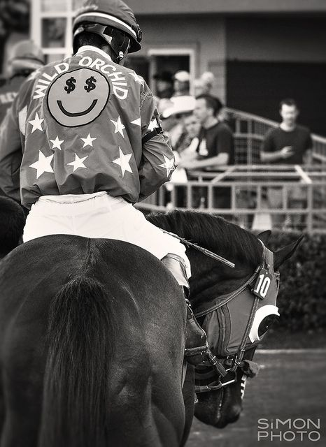 Racehorse in the Paddock