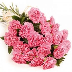 Pink Carnations Bouquet In Sitapur 740 Flower Delivery Flower Bouquet Delivery Online Flower Delivery