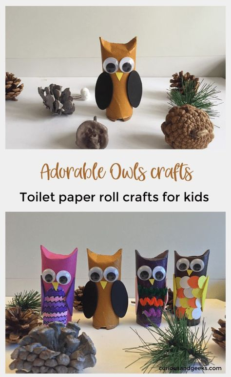 Photo of Toilet paper roll owls – an Owlsome craft for kids – Curious and Geeks