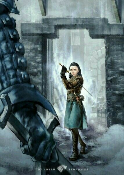 Pin By Julie Kortusova On Game Of Thrones Arya Stark Game Of Thrones Arya Game Of Thrones Art