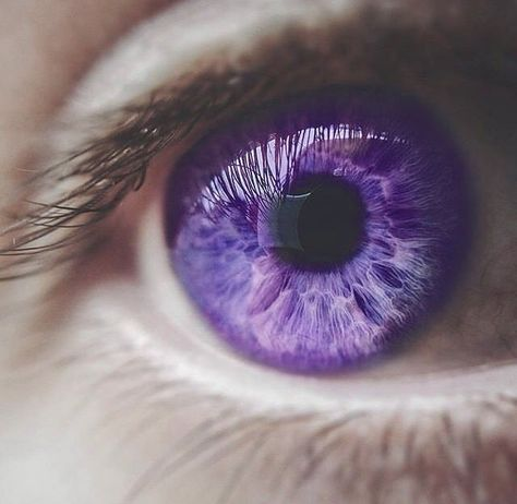 eyes flashing violet when using his power Beautiful Eyes Color, Pretty Eyes, Cool Eyes, Razor Cut Hair, Thin Hair Cuts, Aesthetic Eyes, Purple Aesthetic, Yennefer Of Vengerberg, Violet Eyes