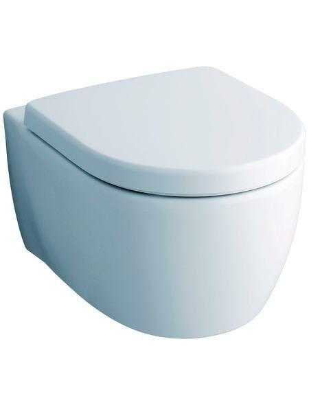 Keramag Wc Sitz Icon Toilettensitz Mit Hochwertiger Absenkautomatik Wc Sitz Absenkautomatik Keramag
