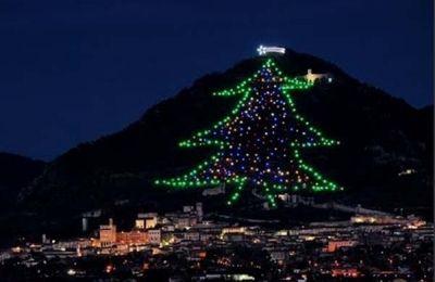 Albero Di Natale Piu Grande Del Mondo.Pin Su Notizie Locali