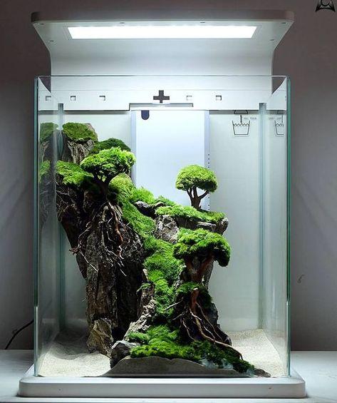 48 Stylish Aquariums Design Ideas That Looks So Adorable