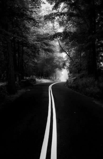 Travel Photography Inspiration Tumblr Woods 17 Trendy Ideas Black And White Aesthetic White Photography Black And White Photography