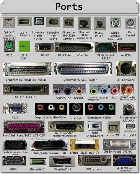 Types of Computer Ports and Their Functions Serial or or COM Parallel Port or Centronics 36 Pin Audio Surround Sound Connectors or mm TRS S/PDIF / Video VGA Digital Video Interface Display RCA Connecto Computer Shortcut Keys, Computer Basics, Computer Help, Der Computer, Computer Case, Gaming Computer, Computer Gadgets, Computer Lessons, Computer Tips