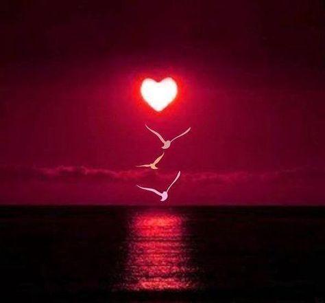 LOVE | Samissomarspace