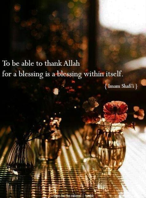 """""""To be able to thank Allah for a blessing is a blessing within itself"""""""