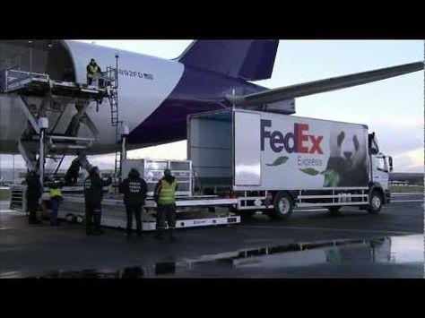 FedEx Express operations FedEx Pinterest Fedex express - fedex jobs