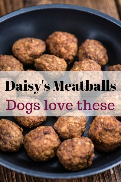 Daisy S Meatballs For Dogs Recipe Dog Food Recipes Homemade
