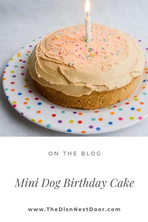 Dog Cake Recipes, Dog Food Recipes, Easy Dog Cake Recipe, Recipe Puppy, Yummy Treats, Sweet Treats, Frozen Dog Treats, Puppy Cake, Doggie Cake