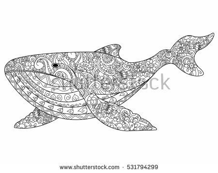 Whale Coloring Book For Adults Vector Illustration Anti Stress