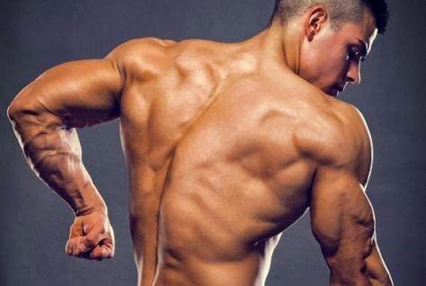 NEO HARDCORE ACADEMIA: Quatro exercícios de tríceps que você não conhecia...