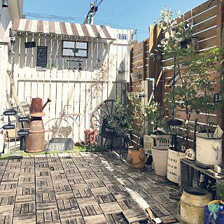 玄関 入り口 ガーデンフェンス Diy カインズホーム ガーデン雑貨 お庭