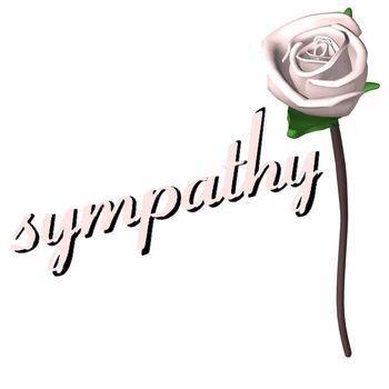 word sympathy - Onwebioinnovate