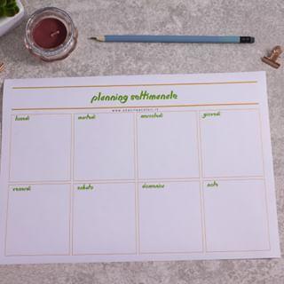 Come Archiviare E Conservare I Documenti Di Casa Planner Planner Settimanale Organizzazione Documenti