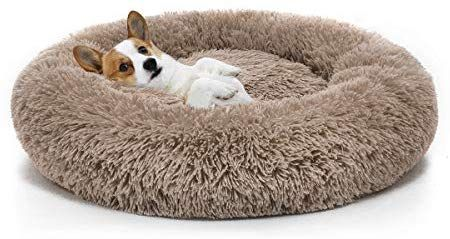 Amazon Com Mixjoy Orthopedic Dog Bed Comfortable Donut Cuddler Round Dog Bed Ultra Soft Washable Dog And Cat Cushion Orthopedic Dog Bed Round Dog Bed Dog Bed