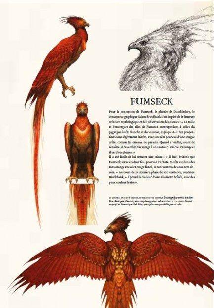 Tattoo Back Phoenix Harry Potter 68 Ideas Phoenix Harry Potter Harry Potter Creatures Harry Potter Art
