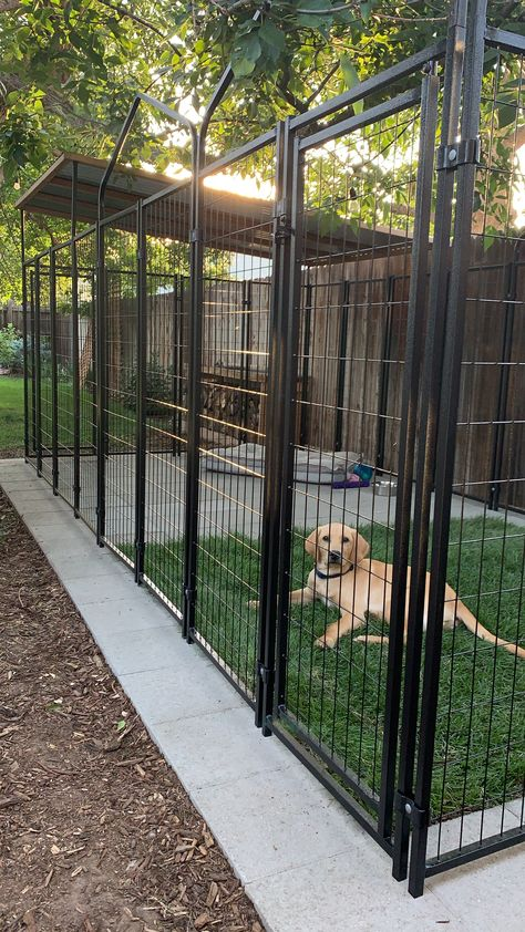 Lucky Dog Pet Products are built to last. Choose from crates, kennels, and our new line of ZERO PLASTIC poop bags. Dog Kennel Designs, Diy Dog Kennel, Dog Kennel Inside, Kennel Ideas, Backyard Dog Area, Diy Backyard Fence, Dog Yard, Dog Run Side Yard, Dog Enclosures