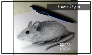 مدونة شمس تعلم رسم فأر بسهولة Blog Posts Blog Hamster