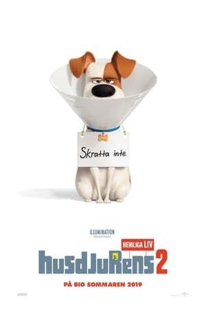 Mozi The Secret Life Of Pets 2 Teljes Film Indavidea Magyarul Tahun Hd 1080p Secret Life Of Pets Secret Life The Secret