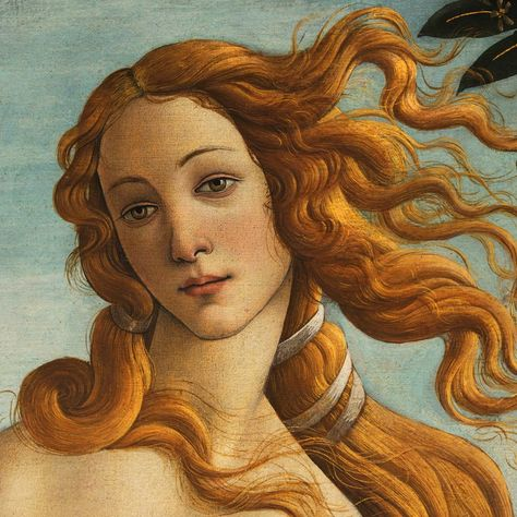 "Venus (Sandro Botticelli) (by Sandro Botticelli) - Detailed view of Venus , from the Renaissance artwork ""Birth of Venus"" by Sandro Botticelli (created 1483 - 1485 CE). Tempera on panel. Provenance: Lorenzo di Pierfrancesco de' Medici family collections. Uffizi Gallery, Florence."