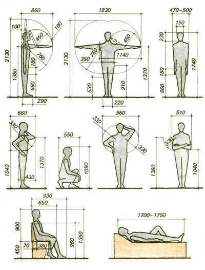 History And Basics Of Anthropometry Human Dimension Design