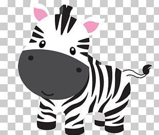 Download Baby Jungle Animals Lion Cartoon Drawing Png Baby Jungle Animals Safari Baby Animals Jungle Animals