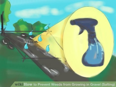 Image Titled Prevent Weeds From Growing In Gravel Salting Step 3