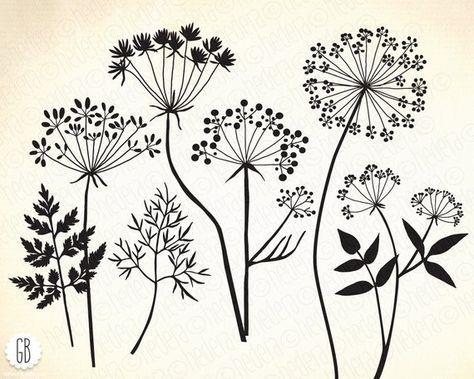 Wild herbs, flowers, silhouette vector clip art, dandelion, parsley, carrot, dill, card, label, diy