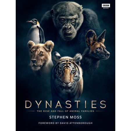 Dynasties The Rise And Fall Of Animal Families Hardcover Walmart Com David Attenborough Animals Free Movies Online