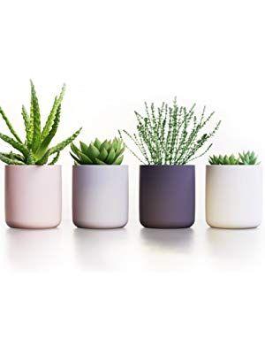 Succulent Pots Ceramic Planters Set Of 4 Cactus Flower Plant Pots Modern Design 3 7 High Containers Ceramic Succulent Pots Succulent Pots Ceramic Planters