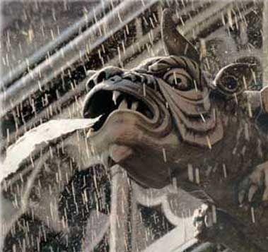 Image result for notre dame gargoyles water