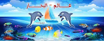 Image Result For صور عالم البحار Outdoor Decor Outdoor Pool Float