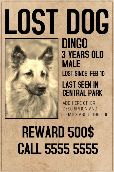 Lost Dog Lot Pet Old Style Poster Template Losing A Dog Losing A Pet Dogs