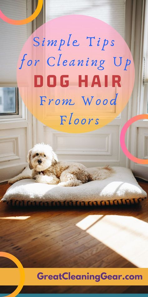 What Is The Best Way To Clean Dog Hair Off Hardwood Floors