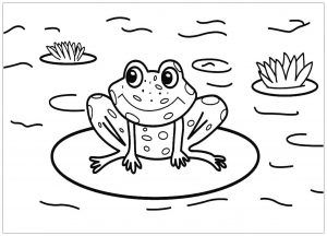 Frogs Free Printable Coloring Pages For Kids Frog Coloring Pages Coloring Pages Halloween Coloring Sheets