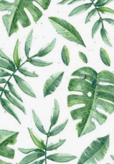 35 Original Wallpaper Ideas Dailypinmag In 2020 Leaves Wallpaper Iphone Palm Leaf Wallpaper Art Wallpaper