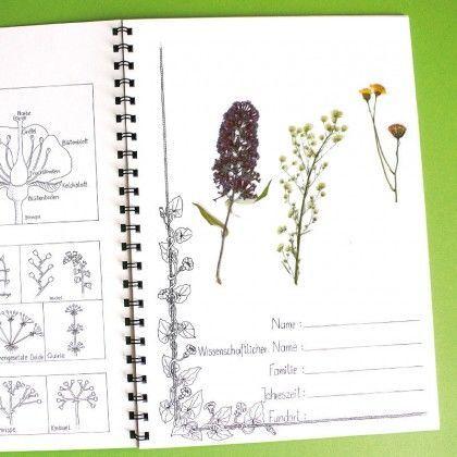 Vorlagen Fur Ein Herbarium 10