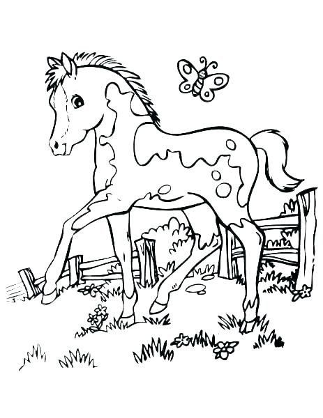 Printable Horse Coloring Pages Horse Coloring Pages Printable Carousel Horse Coloring Pages Horse Coloring Pages Cartoon Coloring Pages Horse Coloring Books