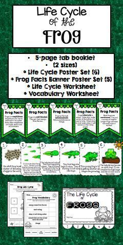 Frog Life Cycle Posters Worksheets And 5 Page Tab Book Life Cycles Cycle First Grade Science