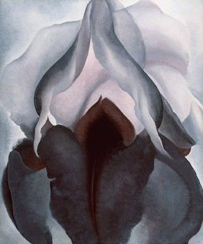 georgia o'keeffe - black iris. what's an art pin board without the infamous vagina flower? i'll always love georgia o'keeffe.