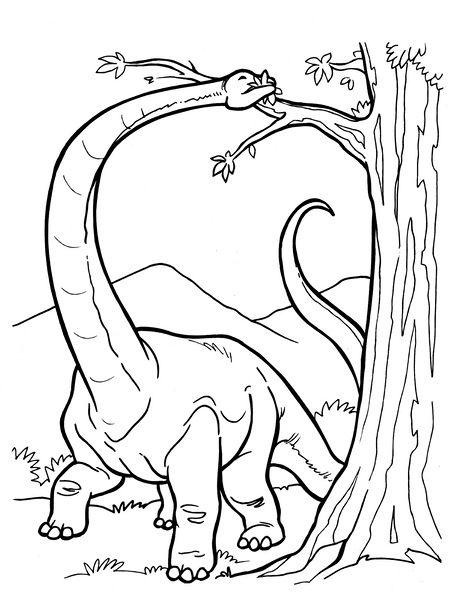 Dinozor Boyama Sayfalari En Guzel Dinozor Boyamalari Boyama Sayfalari Dinozorlar Ense