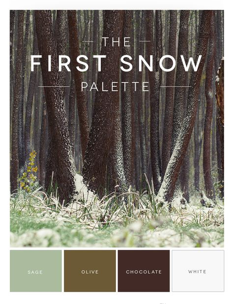 ❄10% OFF The First Snow Palette! ❄ All sage, olive, chocolate, and white candles. Use promo code: SNOW10 at checkout! Shop Now at www.YummiCandles.com