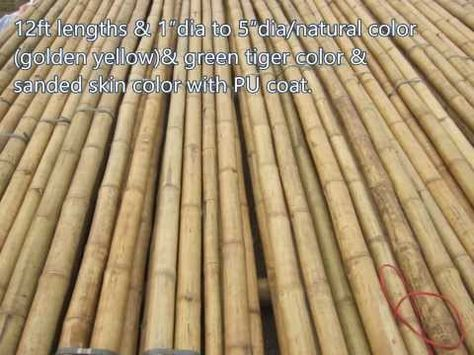 03 01creasian S Real Bamboo Poles Grass Fast Palm Thatch Roofing Bamboo Mat Woven Bamboo Fence With Images Bamboo Poles Canes For Sale Tiki Bar